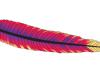 Le serveur web Apache célèbre ses 20 années d'existence